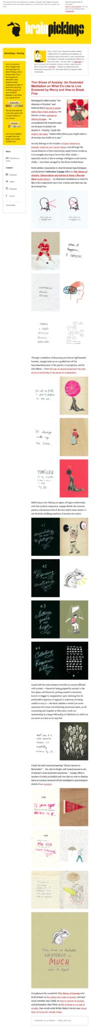 Brain pickings newsletter