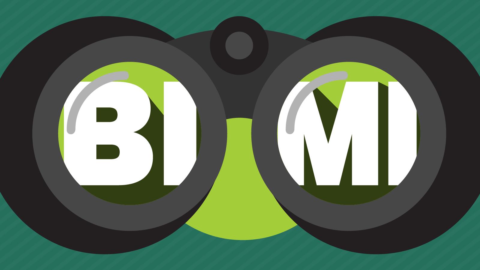 BIMI through the lenses of a binoculars