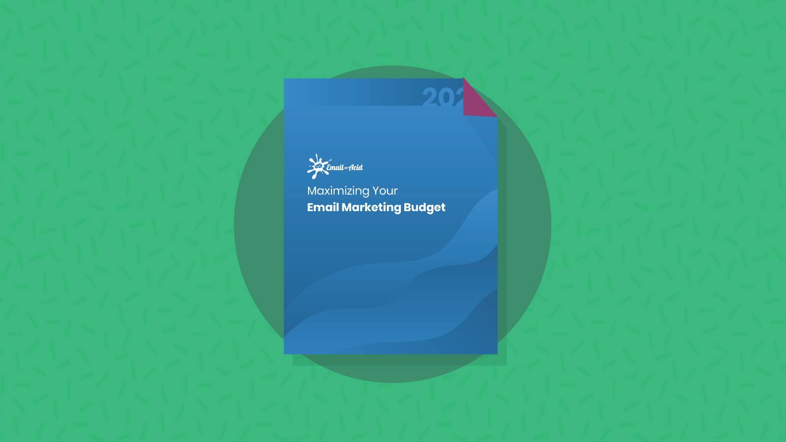 Maximizing Your Email Marketing Budget